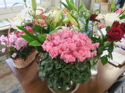 「私は花がとっても大好きです!」④