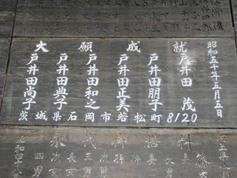 「クリスマス成田山&鰻の川豊&ゆめ牧場ツアー」⑨