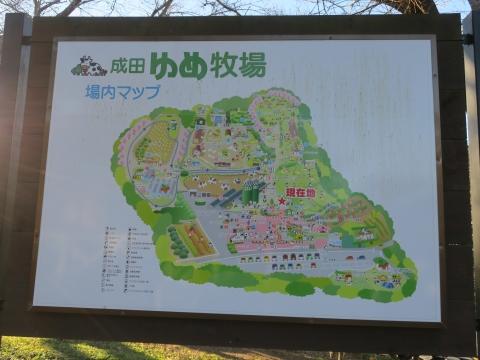 「クリスマス成田山&鰻の川豊&ゆめ牧場ツアー」㉔