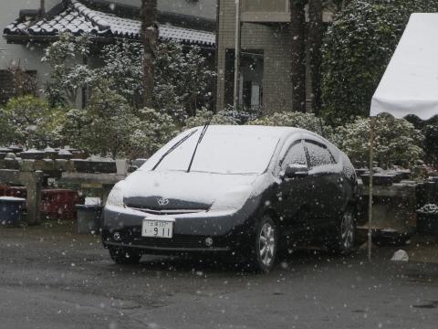 平成31年2月9日「雪が降って来たね!」②