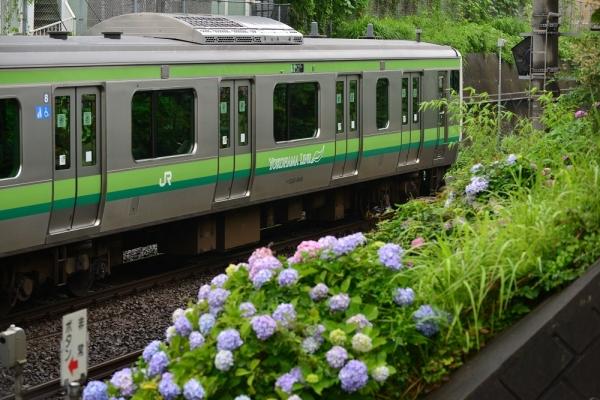 2018年6月16日 JR東日本横浜線 古淵~淵野辺 E233系H009編成