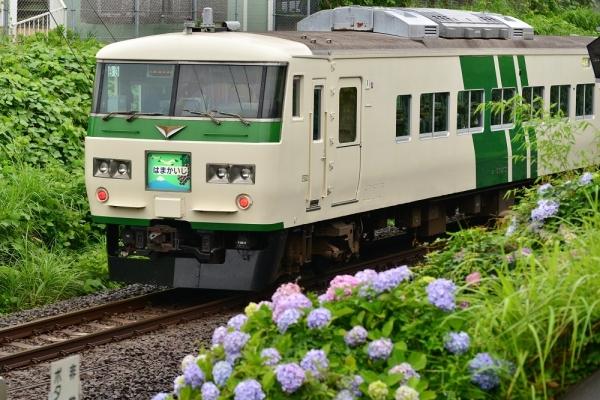 2018年6月16日 JR東日本横浜線 古淵~淵野辺 185系B3編成