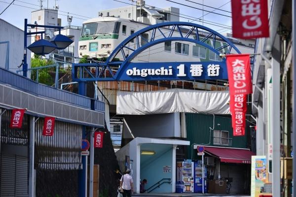 2018年7月8日 JR東日本横浜線 東神奈川~大口 185系B3編成