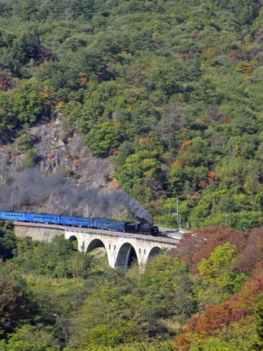 2岩根橋俯瞰1020