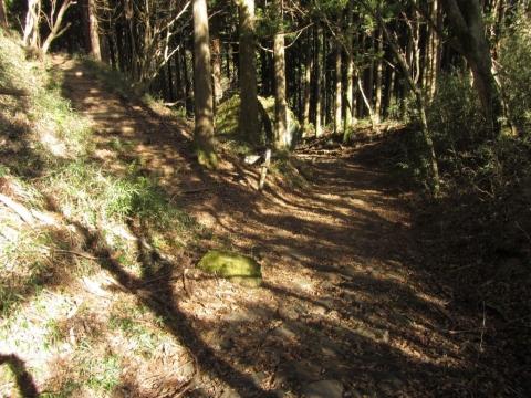 箱根の森展望広場への分かれ道