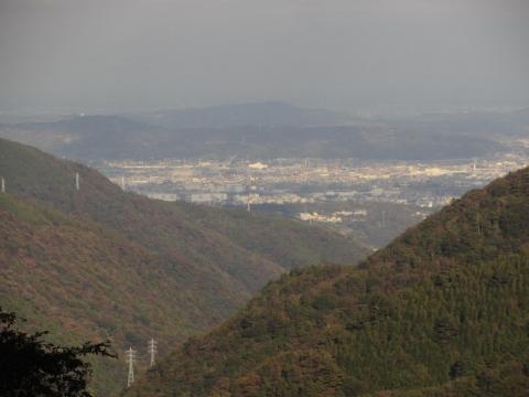 小田原市街の遠望