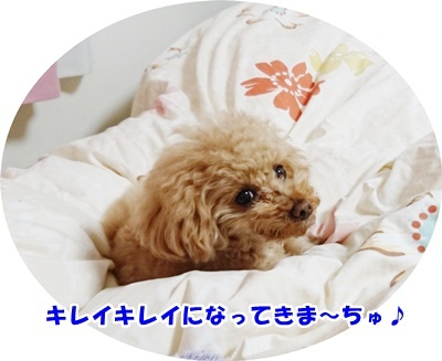 DSC_5663.jpg