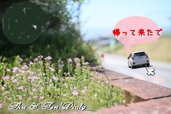 003bIMG_2698.jpg