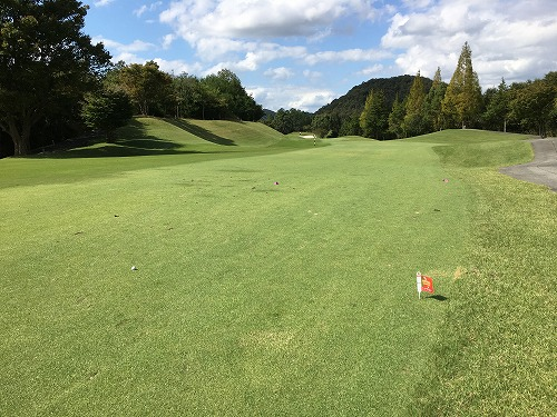 golf83-06.jpg