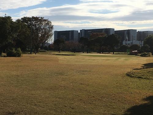 golf86-03.jpg