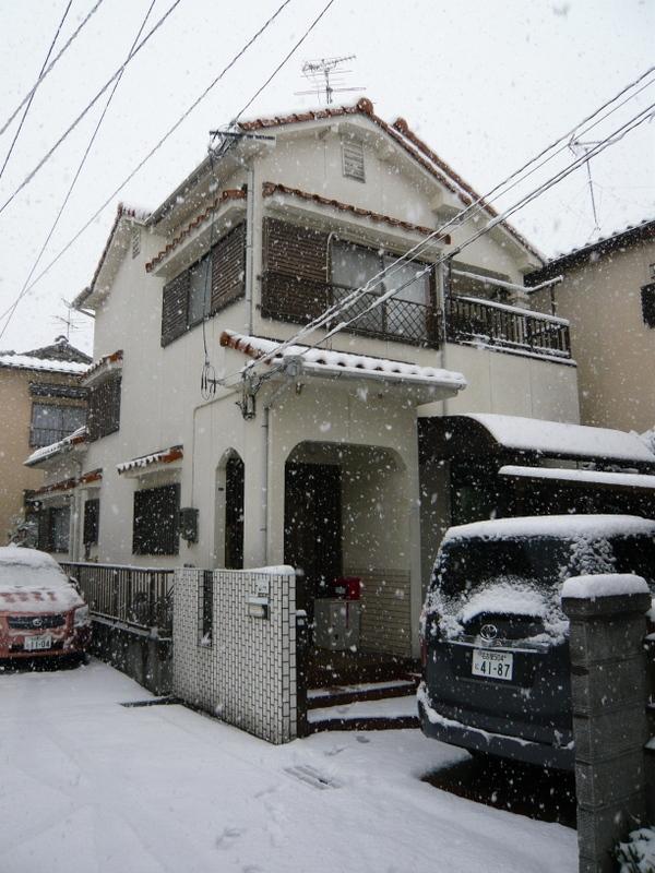 snow_0209_08-4.jpg