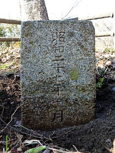 daimonzaki_k11.jpg