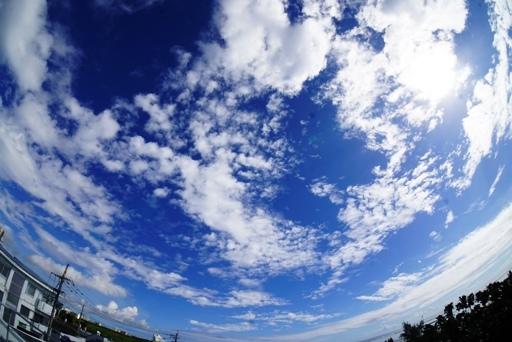 雲間-c DSC07373