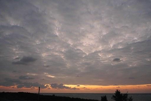晴れの陽-a,1-30,7-07 DSC07717