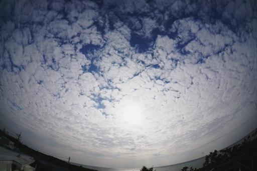 晴れの陽-c ,1-30,9-45 DSC07732