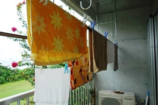 雨洗濯-a DSC03905
