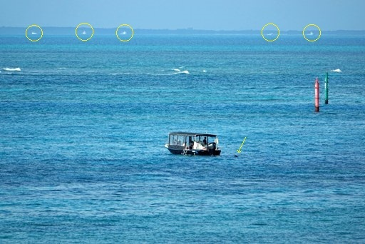 海遊-c DSC05171