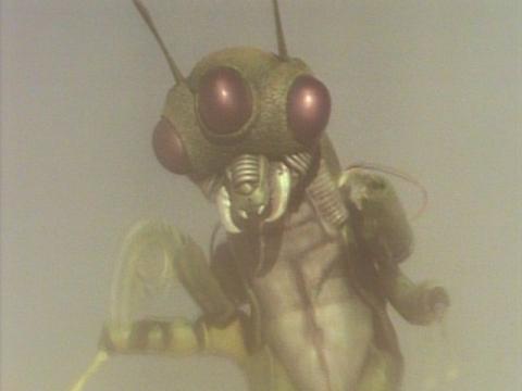 昆虫怪獣 マジャバ
