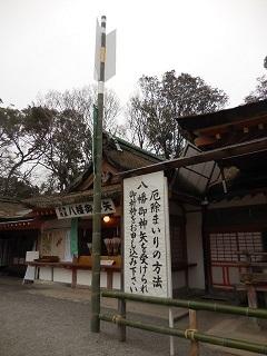 iwashimizutp_31.jpg