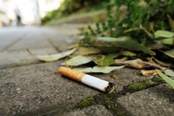 煙草のポイ捨て