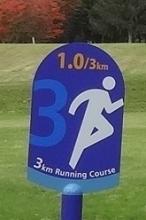 3kmコースの1.0km地点ということだったのね。