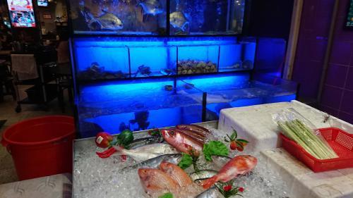 魚は店頭の水槽からチョイス