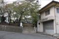 uenomaruyama21.jpg