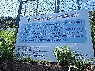haruhino3-6.jpg