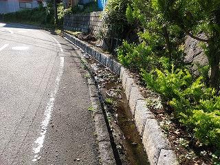 kasayatokouen2-4.jpg