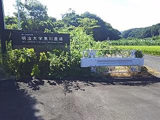 misawagawagennryuu1.jpg