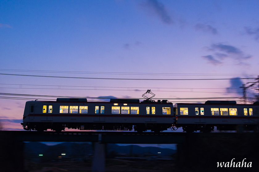 310217ono_ichiba-4.jpg
