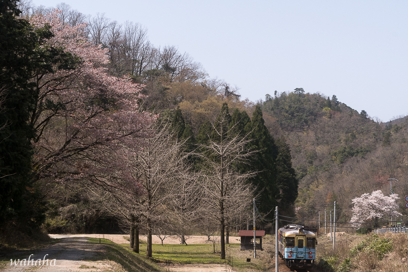310406tantetsu-3.jpg