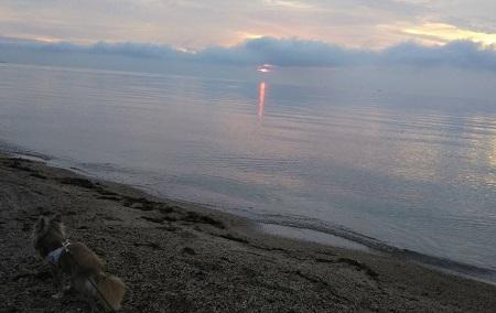 日の出前 びわ湖