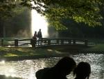 7.代々木公園-31D 04q