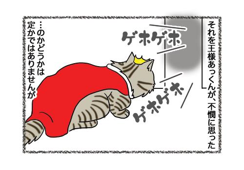 02022019_cat2.jpg
