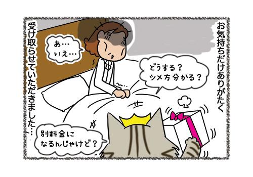 02022019_cat5.jpg