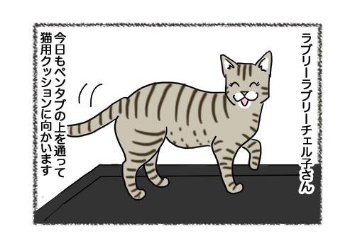 04022019_cat1.jpg