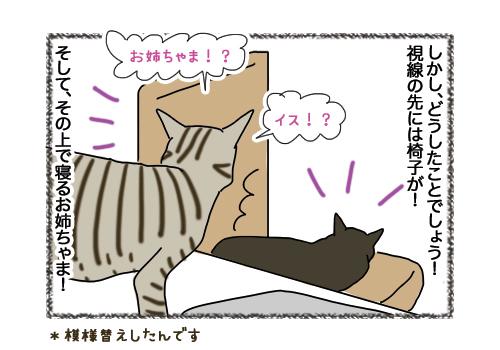 04022019_cat2.jpg