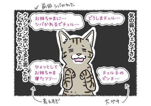 04022019_cat3.jpg