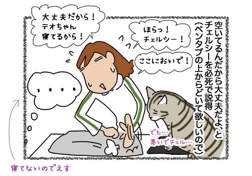 04022019_cat4.jpg