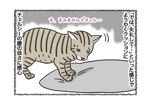 04022019_cat5.jpg