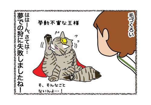07022019_cat4.jpg