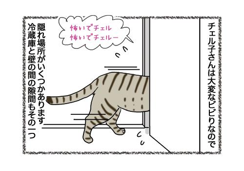 08022019_cat1.jpg