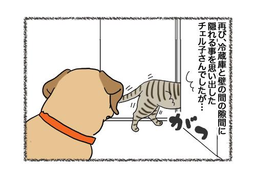 08022019_cat4.jpg