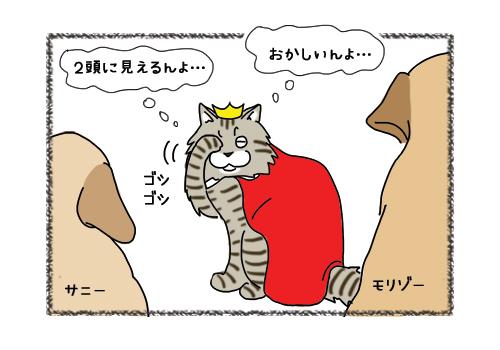 15022019_cat4.jpg