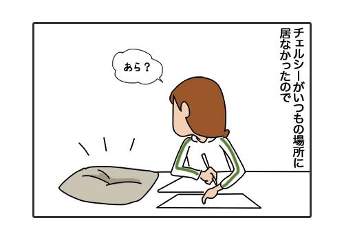 29012019_cat1.jpg