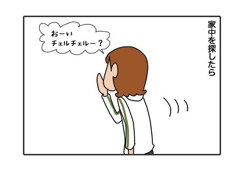 29012019_cat2.jpg