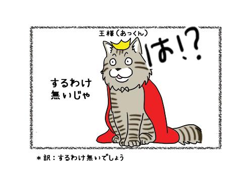 30012019_cat1.jpg
