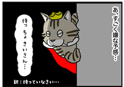 30012019_cat6.jpg