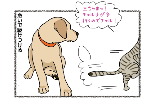 31012019_cat3.jpg